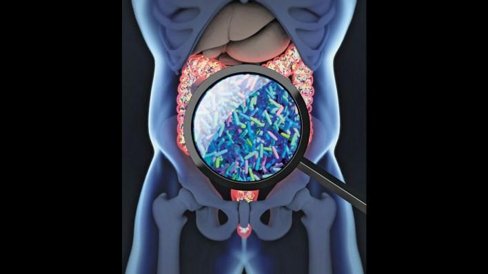 قصة عن البكتيريا