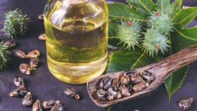 Photo of فوائد زيت الخروع للبشرة الدهنية وكيفية استخدامه