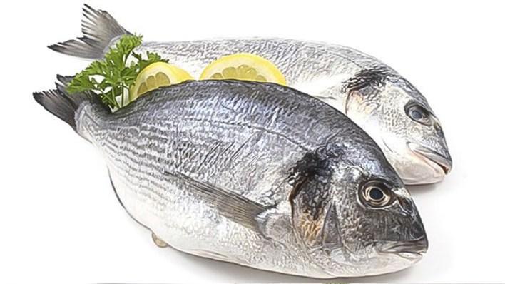 فوائد سمك البلطي