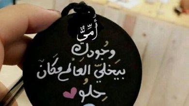 Photo of كلمات شكر و ثناء