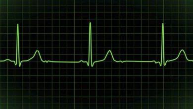 Photo of ماهو عدد دقات القلب ؟