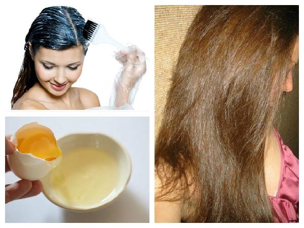 اضرار البيض على الشعر وطرق الاستفادة بدون مشاكل