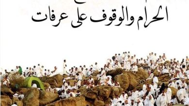 Photo of يوم عرفه وأعمال تفعلها لتكسب ثواب هذا اليوم