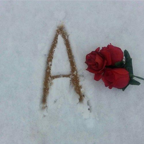 صور حرف a مع وردة مكتوب على الثلج