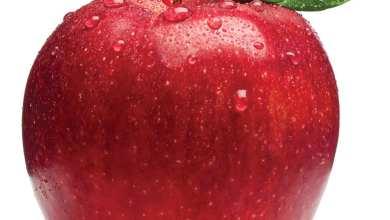 Photo of وصفات طبيعية لتسمين الخدود