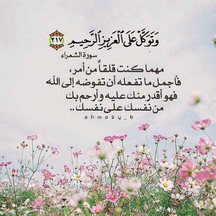 آيات قرآنية عن رحمة الله