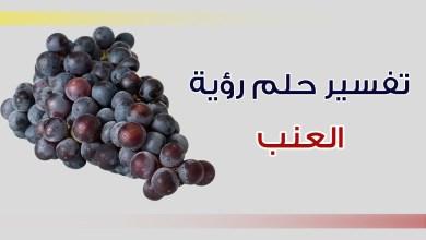 Photo of تفسير حلم العنب في المنام