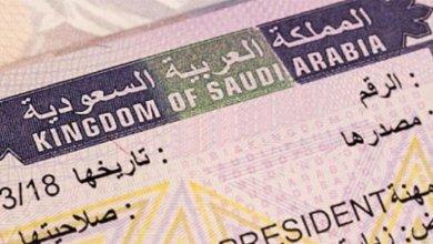 Photo of عدد التأشيرة السياحية في السعودية خلال 33 يوم