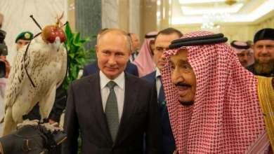 Photo of صور صقر الرئيس الروسي بوتين يهديه الملك سلمان