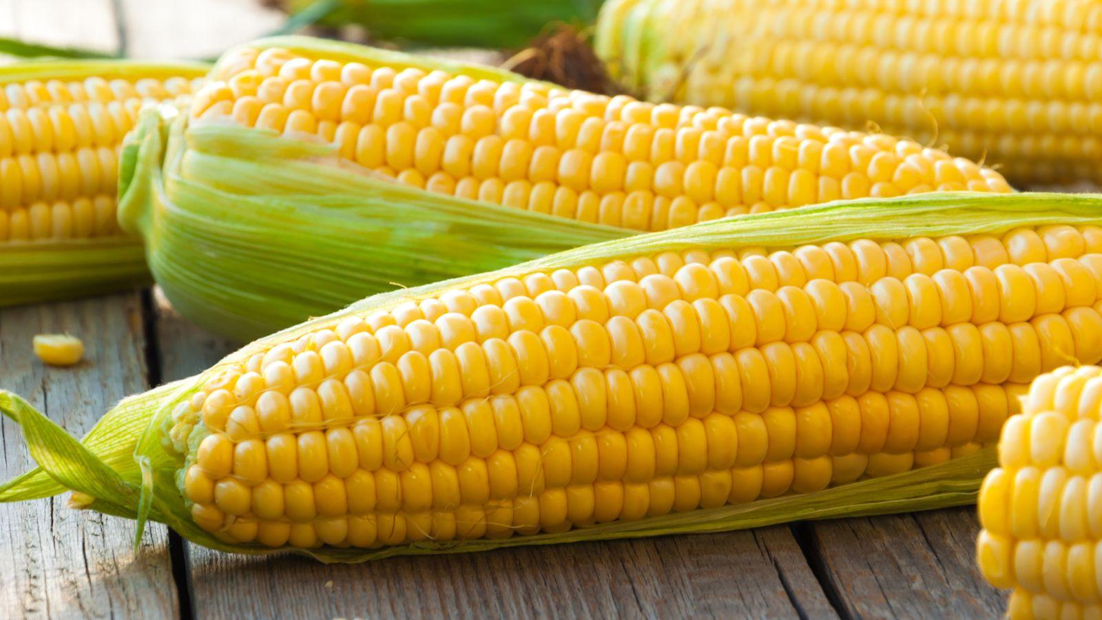 benefits of corn