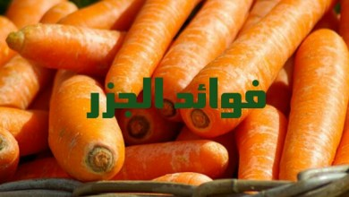 Photo of فوائد الجزر
