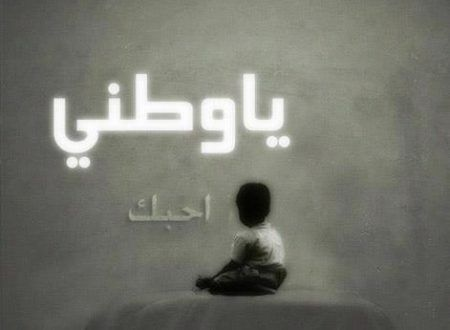 Photo of عبارات عن الوطن الغالي