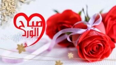 Photo of كلمات صباح الخير , رسائل صباح الخير