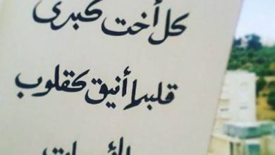 Photo of عبارات مدح عن الاخت