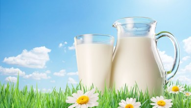 Photo of فوائد الحليب