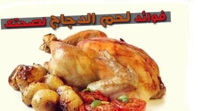 Photo of فوائد الدجاج للحامل