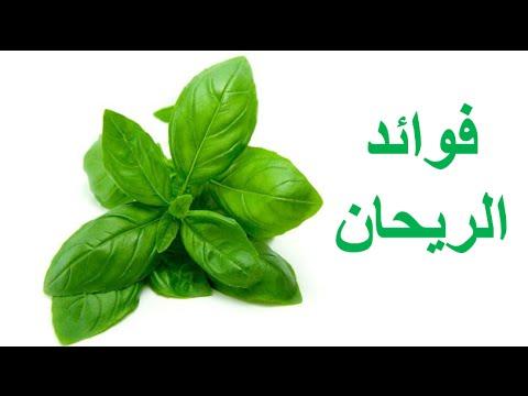 Photo of فوائد الريحان للقولون