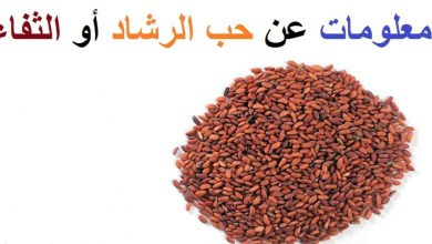 Photo of فوائد الثفاء