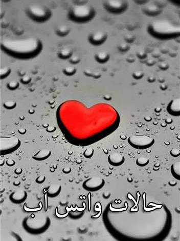 Photo of حالات واتس اب قصيره ومعبره