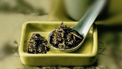Photo of الشاي الأخضر