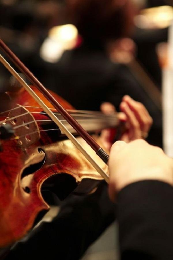 حلم الكمان