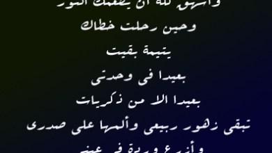Photo of شعر عن فراق الاخ , خواطر حزينة عن فقدان الشقيق