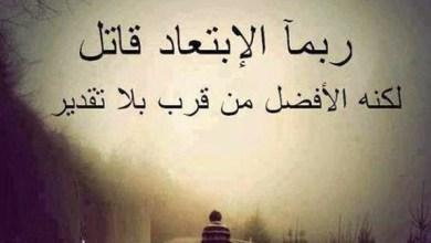Photo of شعر عن الوحدة , عبارات راقيه قويه عن الوحده