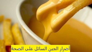 Photo of أضرار الجبنة السائلة , بديل الجبنه السائله
