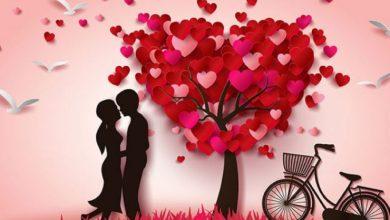 Photo of كلمات عن الحب الحقيقي
