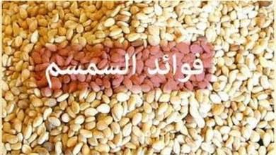 Photo of فوائد السمسم الأبيض , فوائد السمسم للنساء