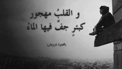 Photo of كلام حزين عن الحب , كلمات مؤثره و مؤلمة للغايه عن الحب
