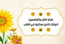 Photo of صور صباح الفل , اجمل صور رسائل صباحية