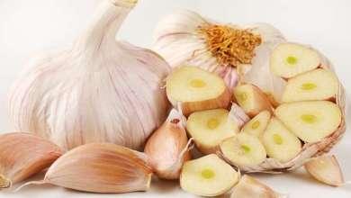 Photo of 7 فوائد صحية وجمالية عند أكل الثوم