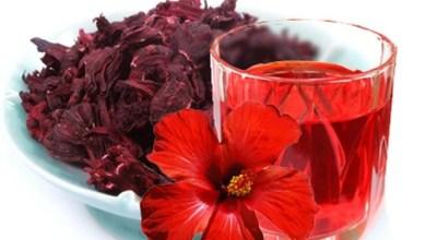 Photo of 12 فائدة من أهم فوائد شرب الكركديه الساخن أو البارد