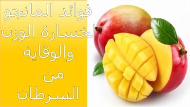 Photo of فوائد المانجو للرجيم , الفوائد الصحية للمانجو