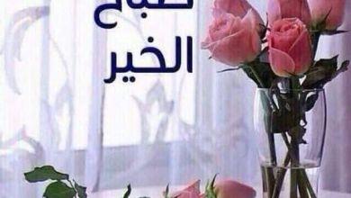 Photo of رمزيات صباح الخير , صور عبارات لتحية الصباح المشرقة