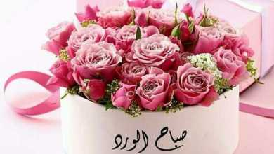 Photo of صباح الورد والياسمين حبيبتي , اروع الكلمات في الصباح
