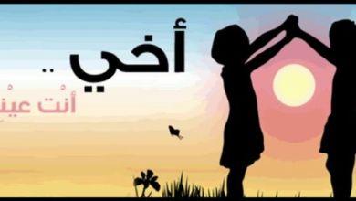 Photo of احلى كلام عن الاخ , أروع العبارات عن الاخ