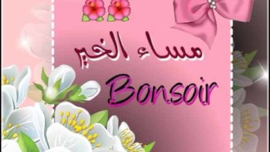 Photo of مساء الخير و الانوار , اجمل صور مساء الخير