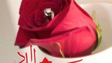 Photo of صور مساء الورد , أحلى خلفيات رومانسية للمساء