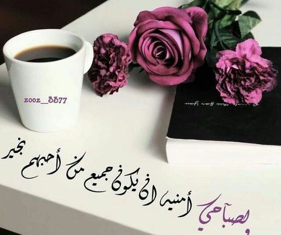 Photo of حبيبي صباح الخير كلمات , احلى وارق تحية صباح للحبيب