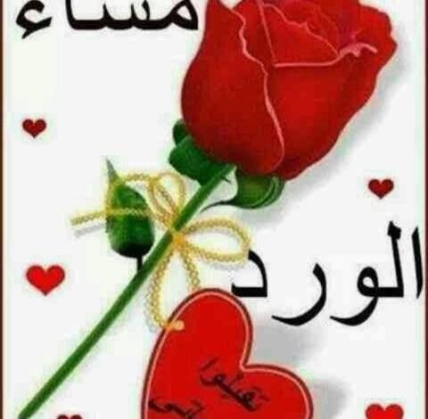 Photo of أجمل صور مساء الخير حبيبي