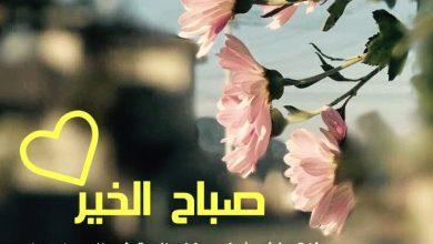 Photo of كلمات صباح الخير للجميع , صور كروت باجمل كلمات صباحيه