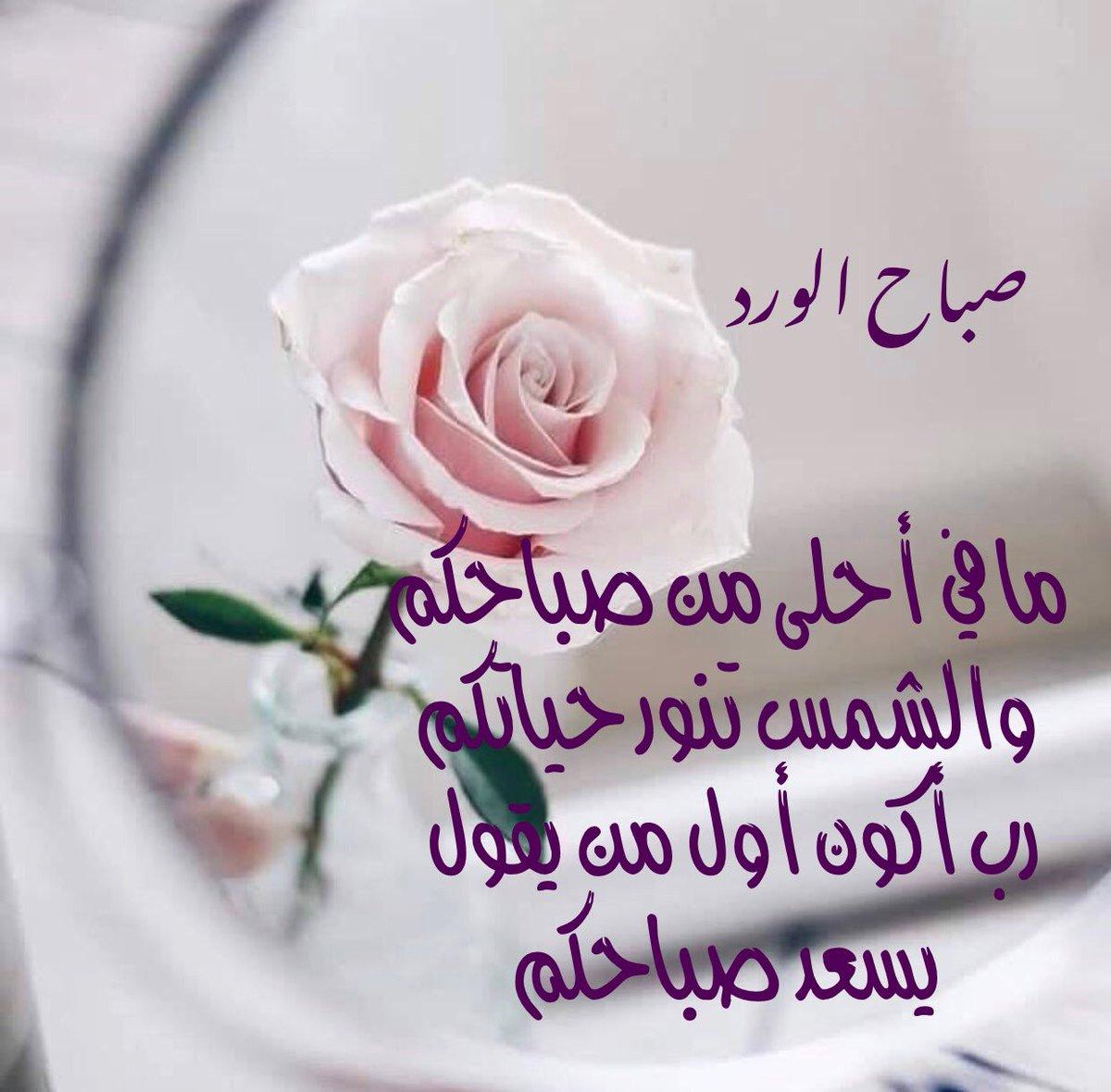 حبيبي صباح الخير اجمل عبارة لبدايه يوم جديد اجمل كلام الحب في