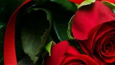 Photo of مساء الخير للجميع , اروع بطاقات تحيات المساء للكل , مساء الخير كلمات جميلة