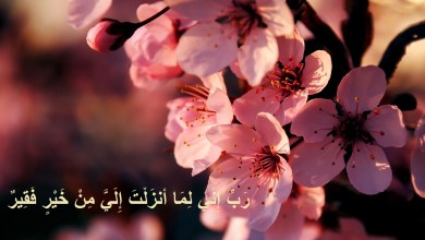 Photo of خلفيات دعاء , اجمل صور خلفيات ادعية اسلاميه