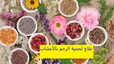 Photo of علاج لحمية الرحم بالأعشاب