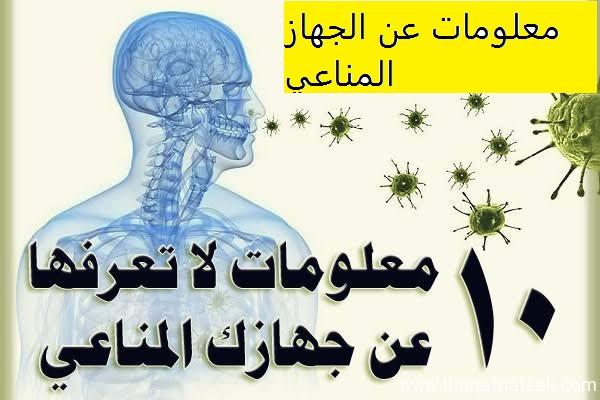 Photo of معلومات عن الجهاز المناعي