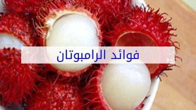 Photo of فوائد فاكهة الرامبوتان للجسم