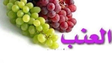 Photo of فوائد العنب وأهميته لصحة الجسم